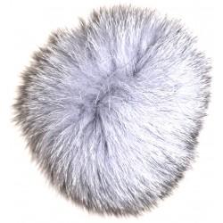 Ein Pudel Waschbär oder Fuchs