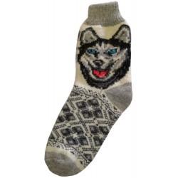 Wollsocken Motiv Hund 4